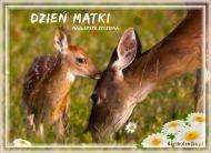eKartki Dzień Matki Życzenia na Dzień Matki,