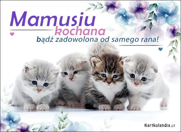 eKartki elektroniczne z tagiem: Kot Milusie życzenia!,