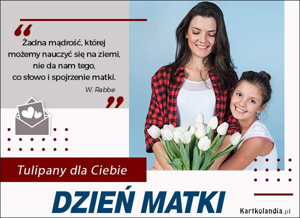 eKartki elektroniczne z tagiem: Tulipan Tulipany na Dzień Matki,