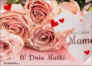 eKartki elektroniczne z tagiem: Róża Dzień Matki - Róże dla Mamy,