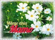 eKartki Dzień Matki Miłego dnia Mamo,