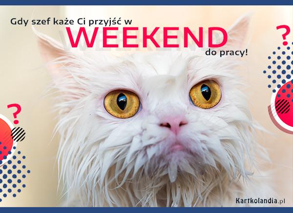 eKartki elektroniczne z tagiem: Kot Weekend w pracy,