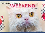 eKartki Wyraź uczucia -> Smutek Weekend w pracy,