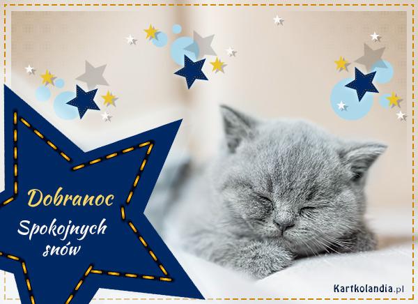 eKartki elektroniczne z tagiem: Kot Spokojnych snów!,