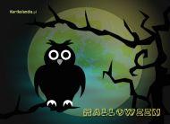 eKartki Halloween W nocy,