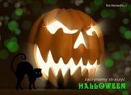 eKartki Halloween Zaczynamy straszyæ,