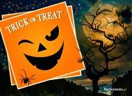 eKartki elektroniczne z tagiem: Strachy Uśmiechnij się w Halloween,