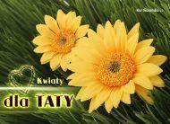 eKartki Dzieñ Ojca Kwiaty dla Taty,