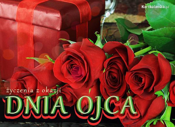 Róża na Dzień Ojca