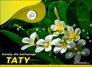 eKartki elektroniczne z tagiem: Dzień Ojca Kwiaty dla kochanego Taty,