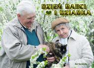 eKartki Dzieñ Babci i Dziadka Dzieñ Babci i Dziadka,