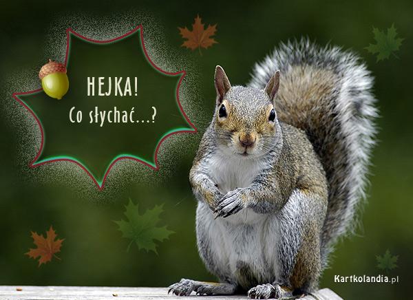 eKartki   Hejka,