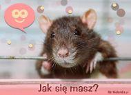 eKartki Wyra¼ uczucia Jak siê masz?,