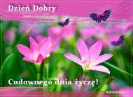 eKartki Wyraź uczucia Cudownego dnia życzę!,