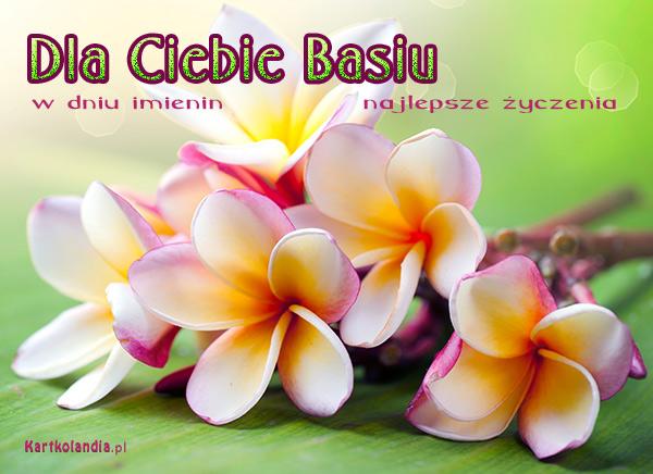 http://kartkolandia.pl/kartki/5/1/d/kartki-imienne-damskie-kartka-dla-basi-1696.jpg