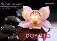 eKartki Imienne damskie e-Kartka dla Doroty,