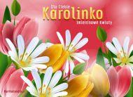 eKartki Imienne damskie e-Kartka dla Karolinki,