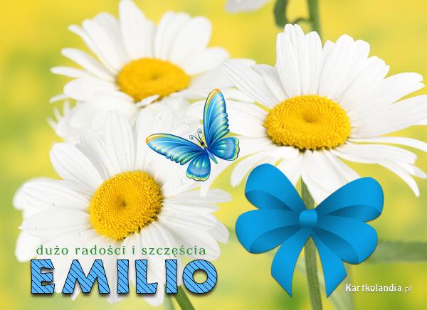 Kwiatuszki dla Emilii