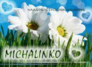 eKartki elektroniczne z tagiem: e-Kartka imieninowa Dla Michalinki,