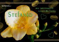 eKartki elektroniczne z tagiem: e-Kartka imieninowa Frezja dla Stefani,