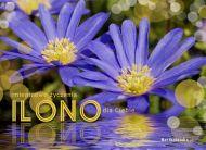 eKartki Imienne damskie Imieninowe życzenia dla Ilony,
