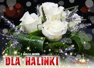 eKartki Imienne damskie Imieniny Halinki,
