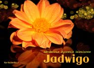eKartki elektroniczne z tagiem: e-Kartka imieninowa Kartka imieninowa dla Jadwigi,