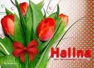eKartki Imienne damskie Kartka z tulipanami,