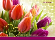 eKartki elektroniczne z tagiem: e-Kartka imieninowa Kartka z tulipanami dla Sandry,