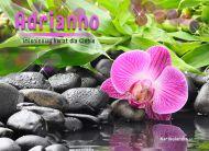 eKartki elektroniczne z tagiem: e-Kartka imieninowa Kwiat dla Adrianny,