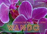 eKartki Imienne damskie Kwiaty dla Wandy,