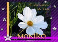 eKartki Imienne damskie Dla Moniki,