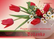 eKartki Imienne damskie Kwiaty imieninowe dla Bo¿enki,