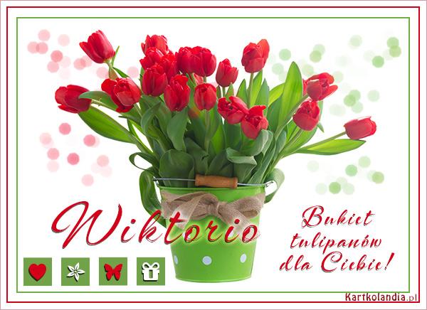 Bukiet tulipanów dla Wiktorii