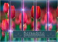 eKartki elektroniczne z tagiem: e-Kartka imieninowa Dzień Imienin Bernadety,