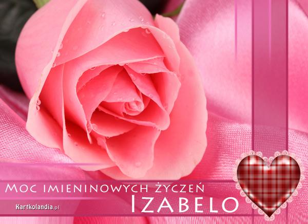 Róża dla Izabeli