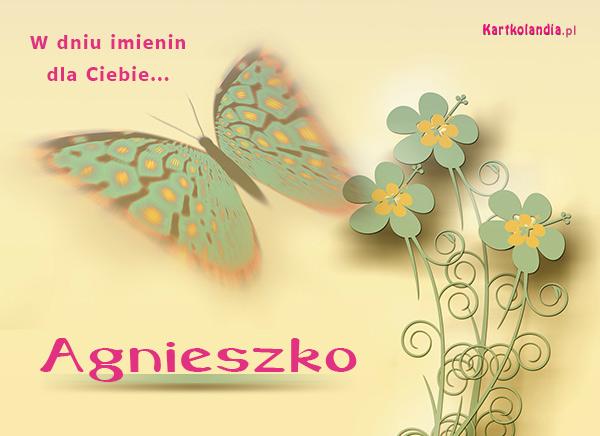 Kartka dla Agnieszki