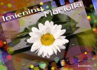 eKartki elektroniczne z tagiem: Dla Marioli Imieniny Mariolki,