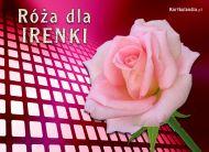 eKartki Imienne damskie Róża dla Irenki,