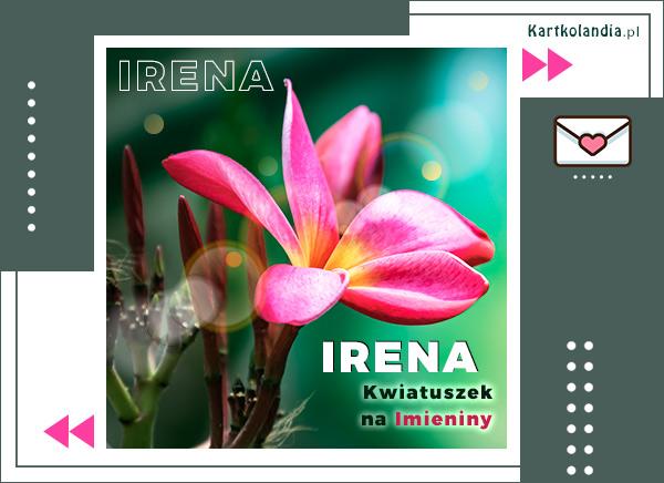 Irena - Kwiatuszek na Imieniny