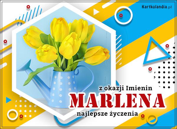 eKartki elektroniczne z tagiem: Lenka Marlena - Imieninowy bukiet tulipanów,