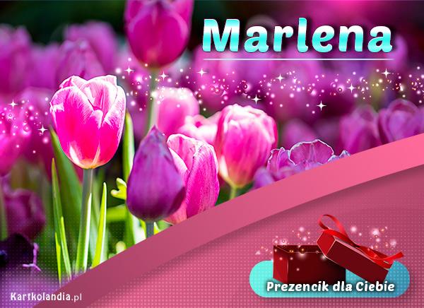 eKartki elektroniczne z tagiem: Lenka Prezencik dla Marleny,
