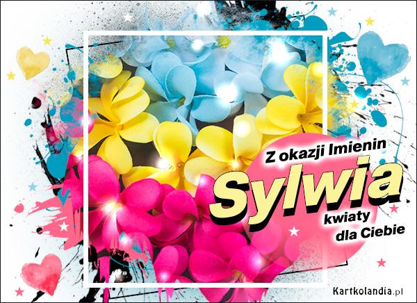 eKartki   Sylwia - Z okazji Imienin...,