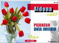 eKartki Imienne Damskie Aldona - Pięknego Dnia Imienin!,
