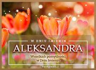 eKartki Imienne Damskie Aleksandra - W dniu Imienin...,