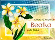 eKartki Imienne Damskie Beatka - Kwiaty na Imieniny,