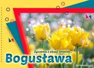 eKartki Imienne Damskie Bogusława - Życzenia z okazji Imienin,