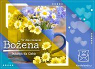 eKartki Imienne Damskie Bukiecik kwiatów dla Bożeny,