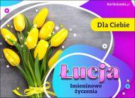 eKartki Imienne Damskie Bukiet z życzeniami dla Łucji,