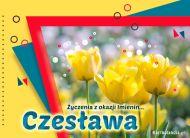 eKartki Imienne Damskie Czesława - Życzenia z okazji Imienin,